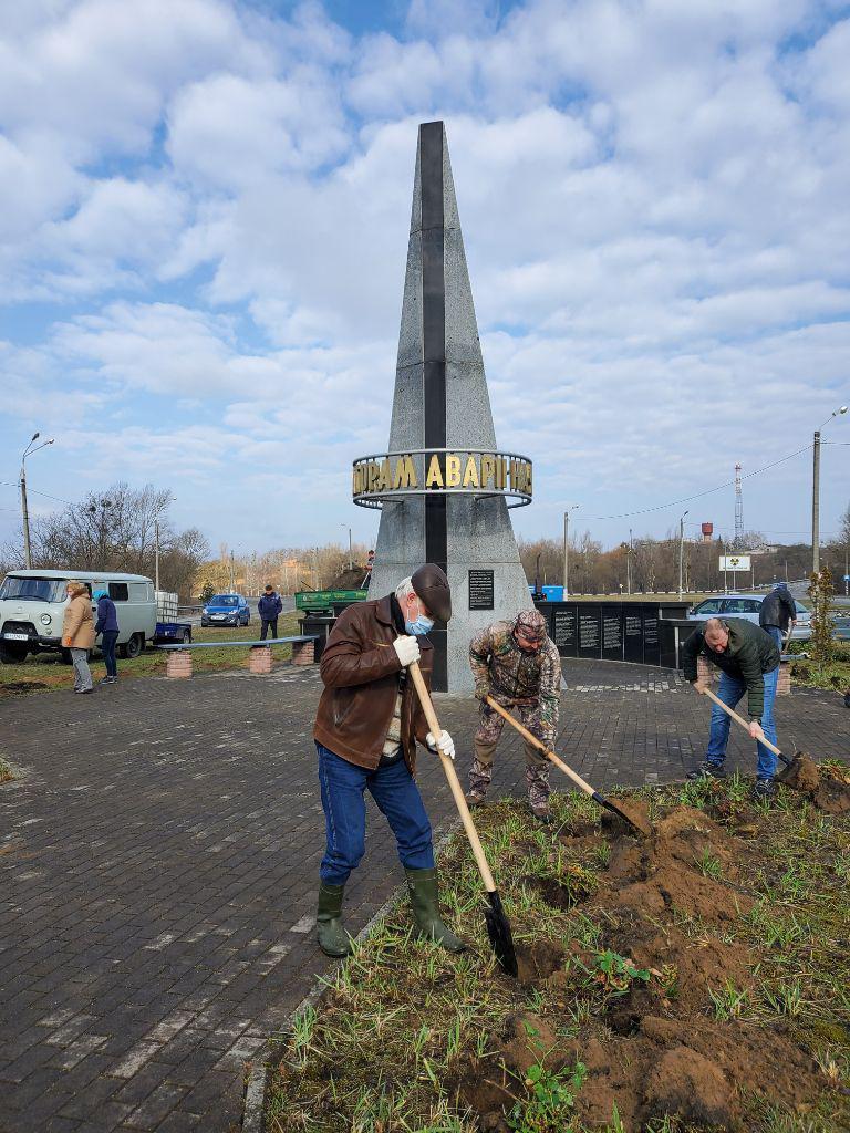 До 35-ї річниці Чорнобильської трагедії в Іванкові висадили трояндову алею